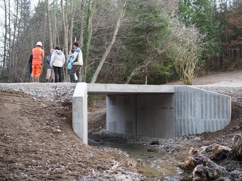 Nouveau pont cadre du chemin forestier de Passérieux